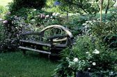 Bench In Garden — Stock Photo