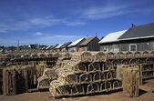 Rows Of Lobster Pens — Stock Photo