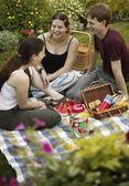 Three Teenage Friends Having A Picnic — Foto Stock