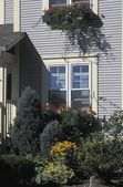 Exterior Of House Showing Garden And Window Boxes — Stock Photo