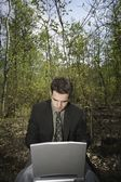 Working On A Pc In A Woodland Glade — ストック写真