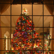 Christmas Tree Indoors — Foto Stock