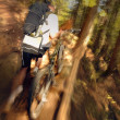 Stock Photo: Mountain Biker