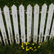 Stock Photo: A White Picket Fence