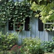 Cottage Cabin — Stock Photo #31621505