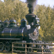 Steam Train — Stock Photo #31621679