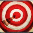 On Target — Stock Photo