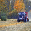 Tractor In Field — Foto Stock