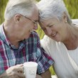 Senior Married Couple — Stock Photo #31623773