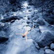 Body In Stream — Stock Photo #31624391