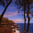 Stock Photo: Tropical Coastline