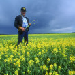 Stock Photo: Farmer Inspecting Crop
