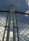 Chain Link Gate With Barbed Wire — Stock Photo
