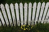 A White Picket Fence — Foto de Stock