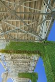 Moss Growing Underneath A Bridge — Stock Photo