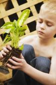 Young Boy Holding Plant — Stockfoto