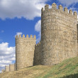 11Th Century Walls Of ÁvilSpain — Stock Photo #31678289