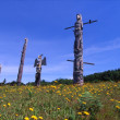 Stock Photo: Nimpkish Burial Grounds And Totem Poles