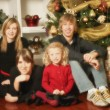Family Christmas Portrait — Stock Photo #31678381