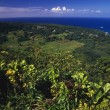 View Of Pacific Ocean From Keanae Peninsula — Stock Photo