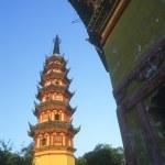 A Pagoda — Stock Photo