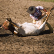 Stock Photo: Cowboy Steer Wrestling