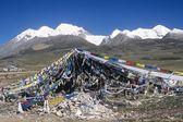 Tibetan Prayer Flags, Damshung County, Tibet, China — Stock Photo