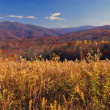 Pisgah National Forest In Autumn — Stock Photo #31680003
