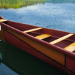 Stock Photo: Fancy Canoe