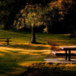Stock Photo: Park And Picnic Benches