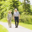 Stock Photo: Senior Couple Taking Stroll