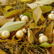 Golden Balls Among Fallen Leaves — Stock Photo