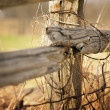 Stockfoto: Old Wooden Fence