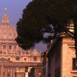 St. Peter's Basilica — Stock Photo #31680839