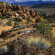 Stock Photo: Desert Landscape, Fiery Furnace Rock Formations, Arches National Park