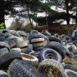 Tires Going To Waste — Stock Photo #31681099