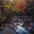 Roaring Brook, Autumn Colors, Baxter State Park — Stock Photo