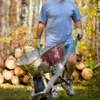 Stock Photo: MWith Wheelbarrow