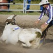 Cowboy Roping Longhorn Steer — Stock Photo #31682741