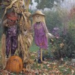 Stock Photo: Scarecrow Display