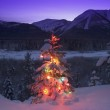 Lit Christmas Tree In The Mountains — Stock Photo #31683265
