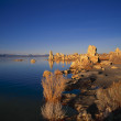 Stone Formations Are Typical Of Mono Lake — Stock Photo