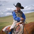 Stock Photo: Young Cowboy On Horse