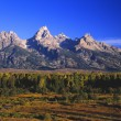 Grand Teton Range, In Morning Light — Stock Photo