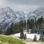 German Bavarian Alps In Berchtesgaden — Stock Photo