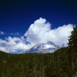 Stock Photo: Clouds Hover Over Mount Hood