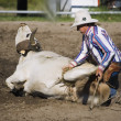 Stock Photo: Cowboy Roping Longhorn Steer