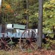 Stock Photo: Wagon In Woods