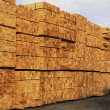 Stacked Lumber — Stock Photo #31686887