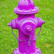 A Bright Pink Fire Hydrant — Stock Photo